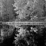FlipFest lake IR Sept 2012 007b