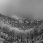 Newfnd Gap fog May8 2013-21ad