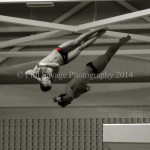 OlympicTrialsDiving08 1030-1