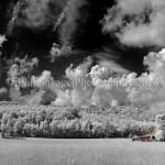 barn red I-40 May 2014-2abc