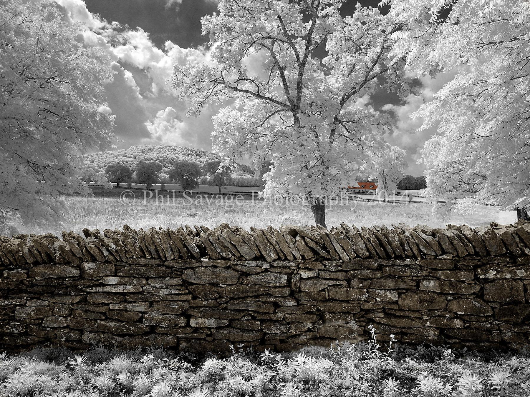 Harpeth Farm IR  Jun8 2013 054bb